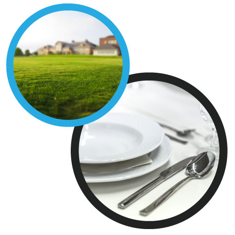 Green Grass and White Place Setting Images